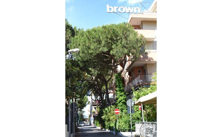 BROWN (RIMINI)