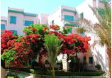 ZAHABIA VILLAGE & BEACH RESORTS