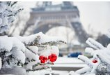 NEW YEAR IN PARIS ECONOMY